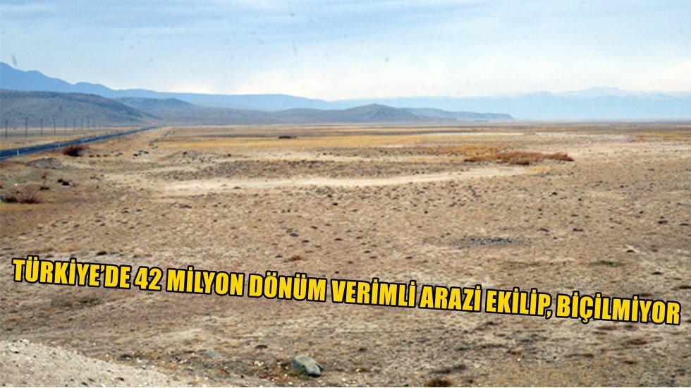 42 milyon dönüm verimli arazi ekilip, biçilmiyor
