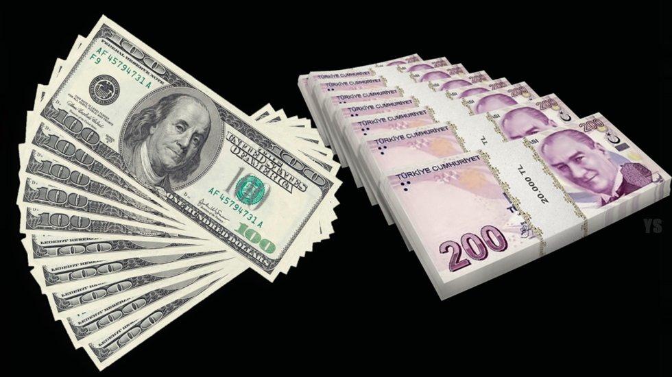 """WSJ'den Erdoğan'a: """"En iyi çözüm yolu, TL'yi euro ve dolara sabitleyecek kurul oluşturmak"""""""